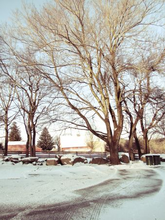 Springton Barn.JPG